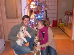 Boxing Day celebration with our favorite Canadians (and their dogs)